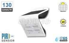 Fali napelemes LED lámpa 3W PIR + akku, fehér IP65